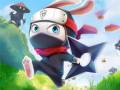Гульні Ninja Rabbit